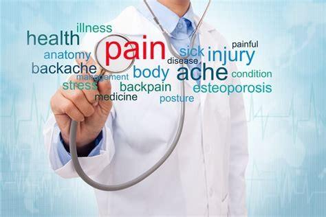 درباره زبان رشته پزشکی